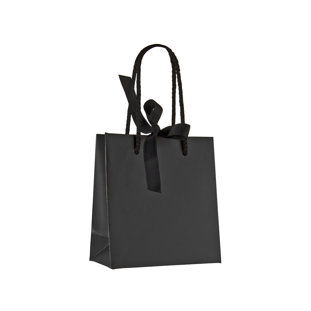 Black Satin Finish Paper Boutique Bag