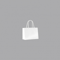 Laminated paper boutique bags