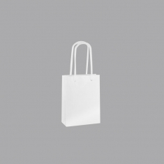 Tall laminated boutique paper bags