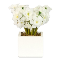 Artifcial silk white daffodils in a white square pot